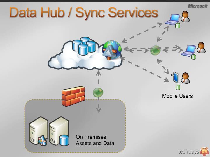 Data Hub / Sync Services