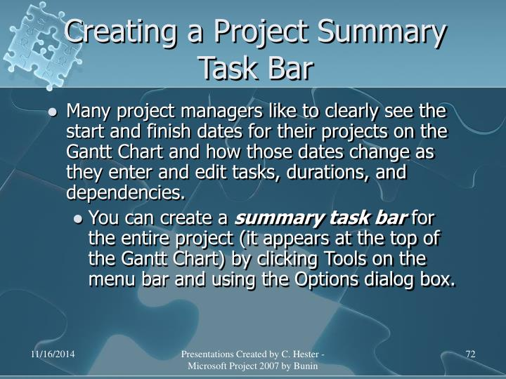 Creating a Project Summary Task Bar
