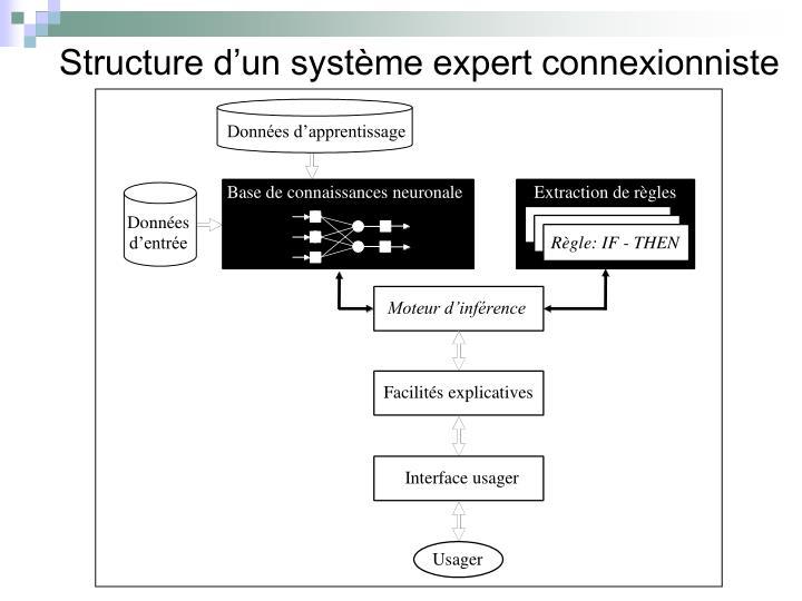 Structure d'un système expert connexionniste