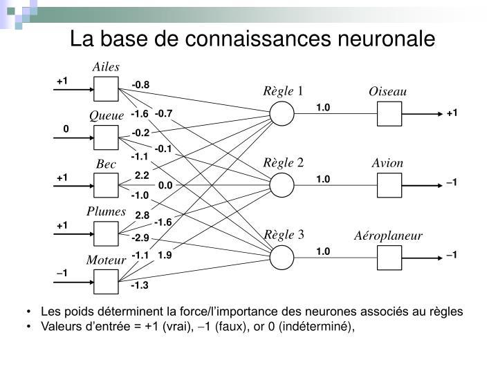 La base de connaissances neuronale