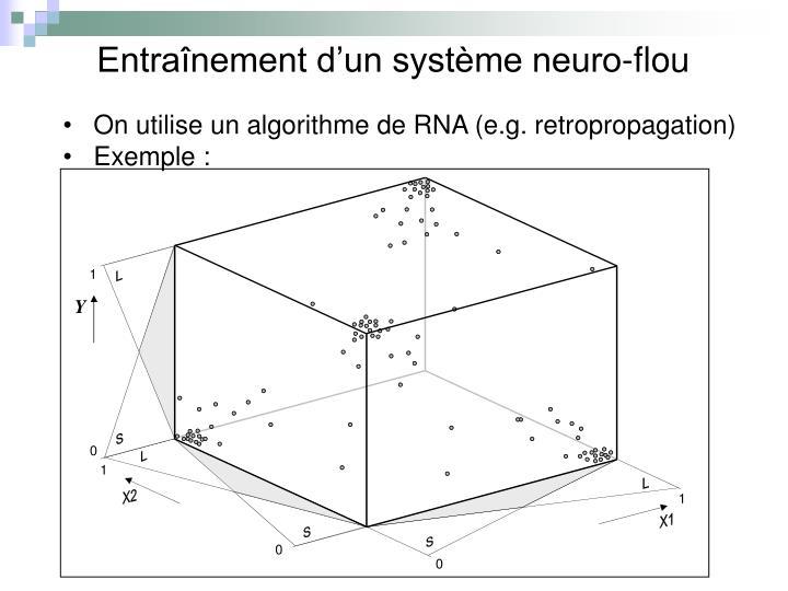 Entraînement d'un système neuro-flou