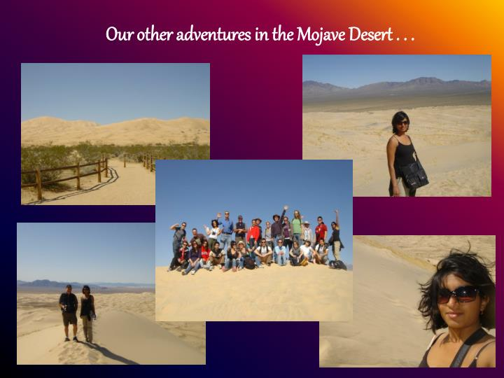 Our other adventures in the Mojave Desert . . .