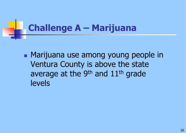 Challenge A – Marijuana