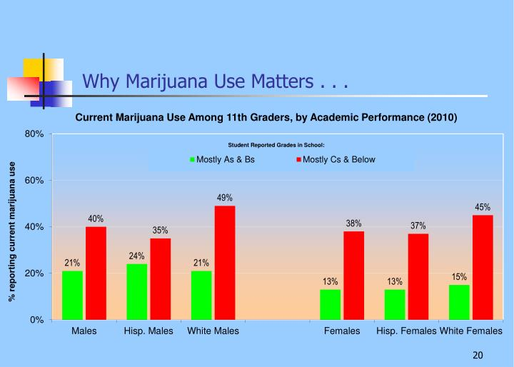 Why Marijuana Use Matters . . .