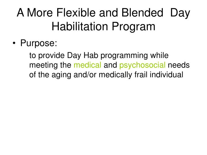 A More Flexible and Blended  Day Habilitation Program