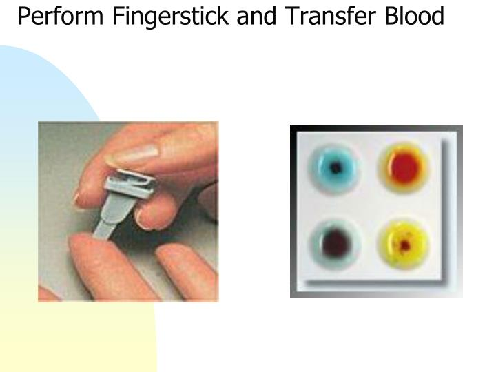Perform Fingerstick and Transfer Blood