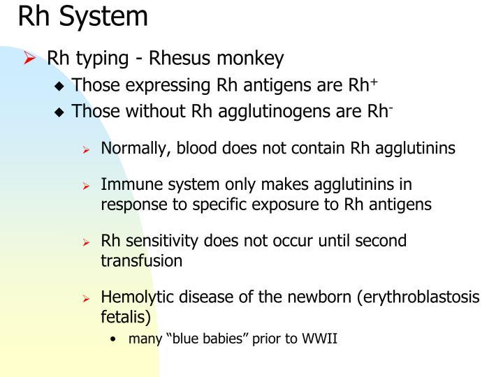 Rh System
