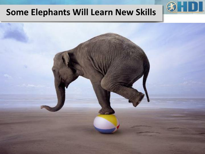 Some Elephants Will Learn New Skills