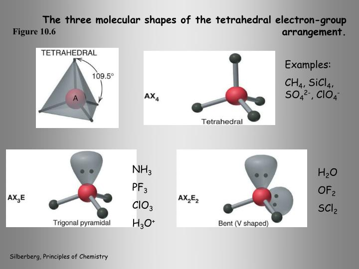 The three molecular shapes of the tetrahedral electron-group arrangement.
