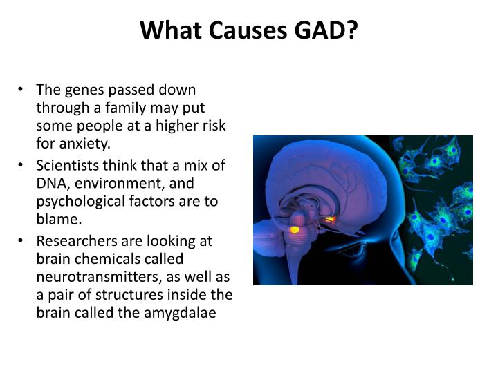 What Causes GAD?