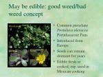 may be edible good weed bad weed concept