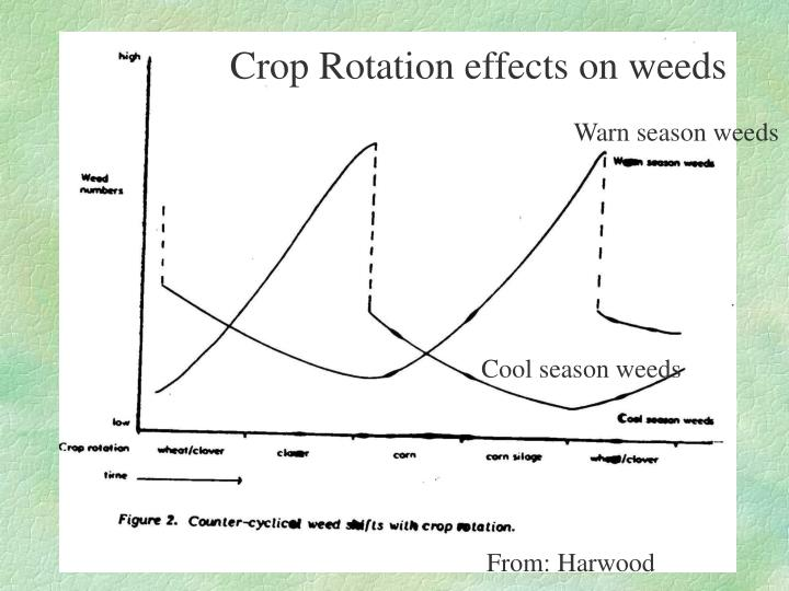 Crop Rotation effects on weeds