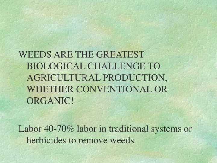 WEEDS ARE THE GREATEST BIOLOGICAL CHALLENGE TO AGRICULTURAL PRODUCTION, WHETHER CONVENTIONAL OR ORGANIC!