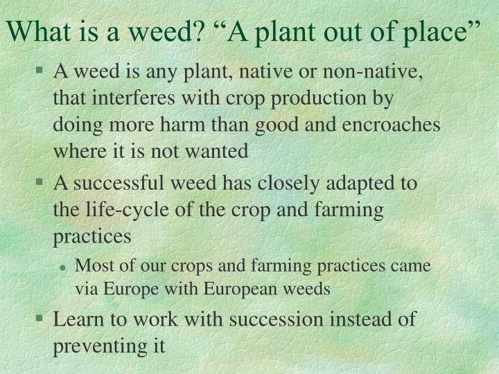 "What is a weed? ""A plant out of place"""