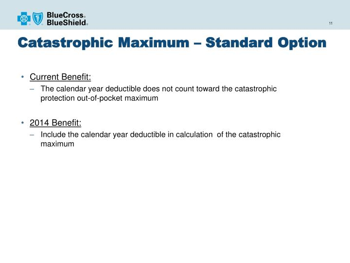 Catastrophic Maximum – Standard Option