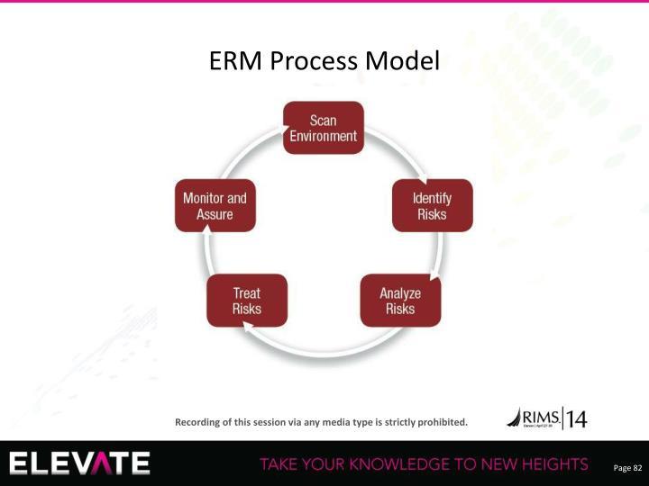 ERM Process Model