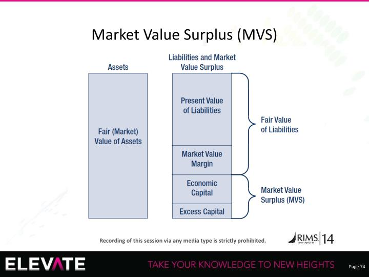 Market Value Surplus (MVS)