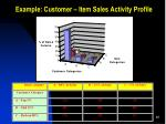 example customer item sales activity profile