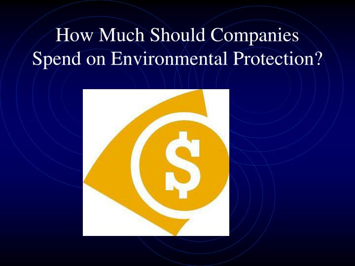 How Much Should Companies Spend on Environmental Protection?