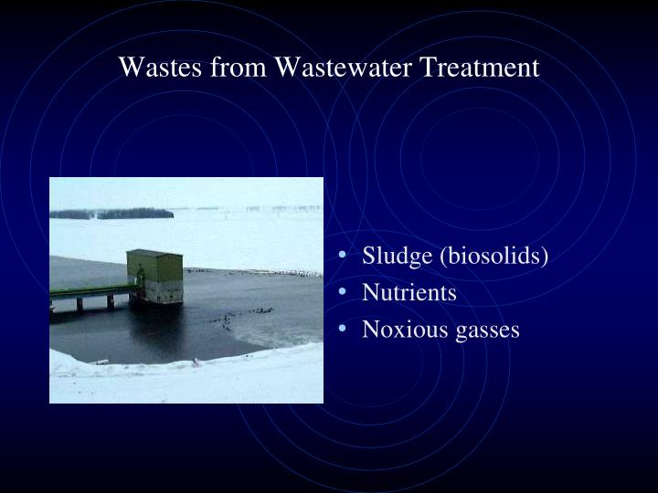 Wastes from Wastewater Treatment