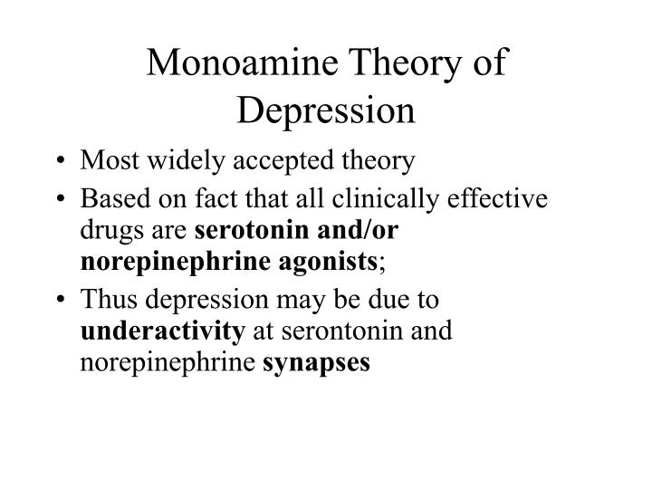Monoamine Theory of Depression