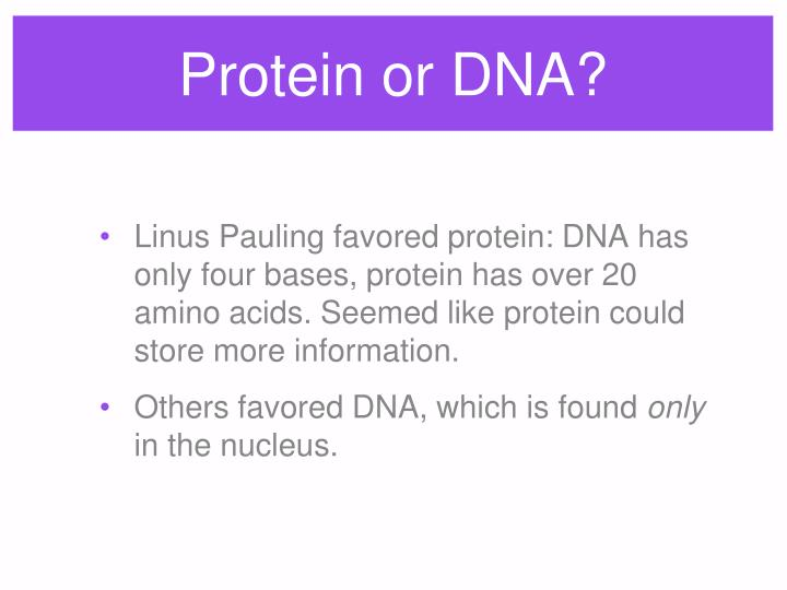 Protein or DNA?