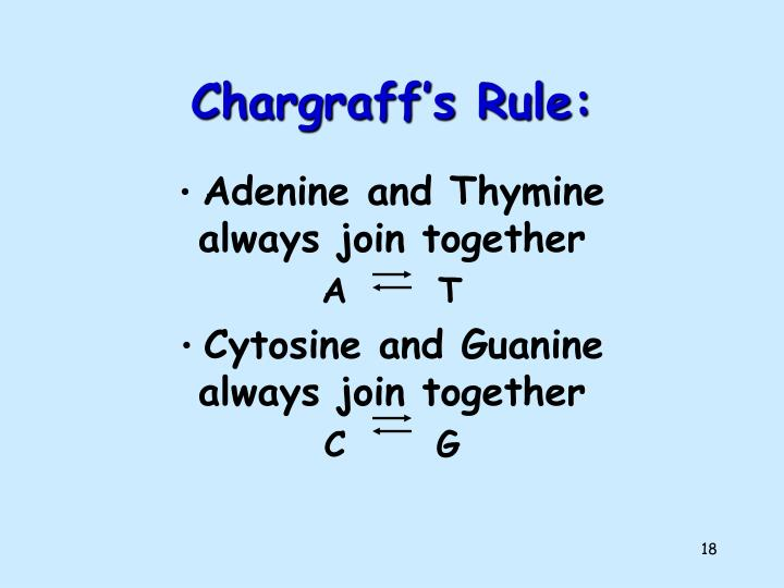Chargraff's Rule: