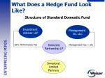 what does a hedge fund look like