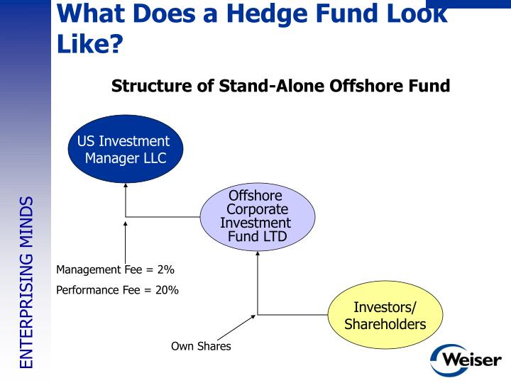 What Does a Hedge Fund Look Like?