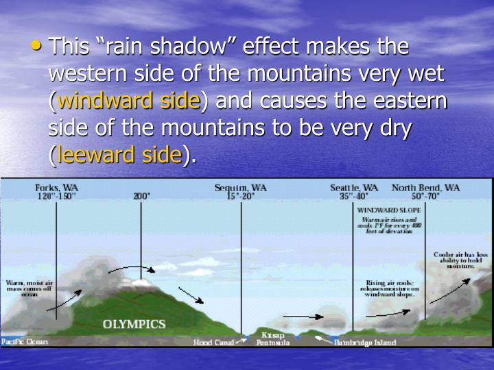 "This ""rain shadow"" effect makes the western side of the mountains very wet ("
