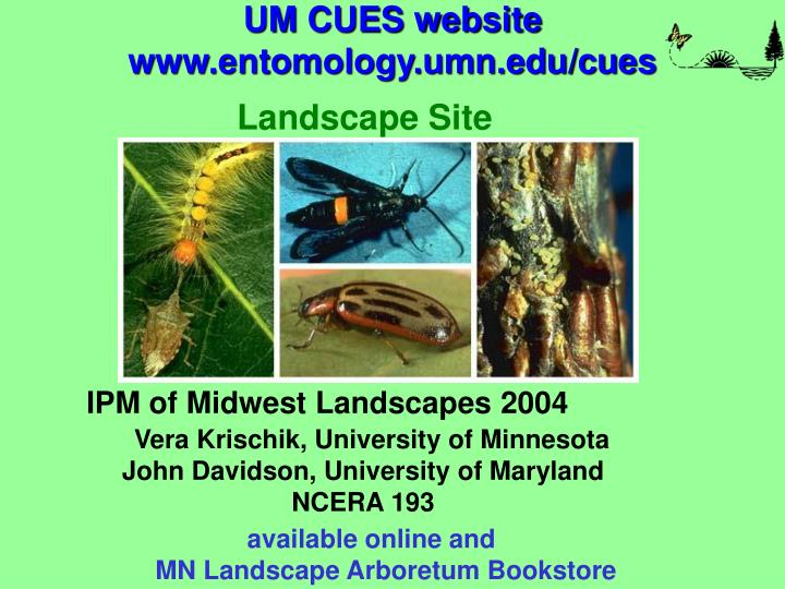 Um cues website www entomology umn edu cues