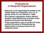 professional in nonprofit organizations