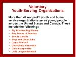 voluntary youth serving organizations