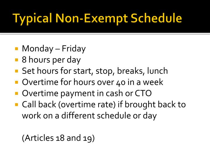 Typical Non-Exempt Schedule