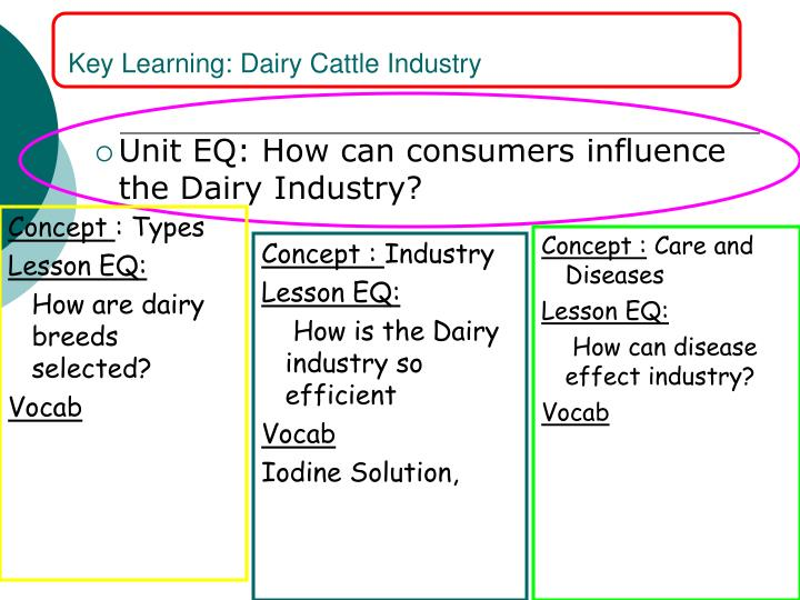 Key Learning: Dairy Cattle Industry