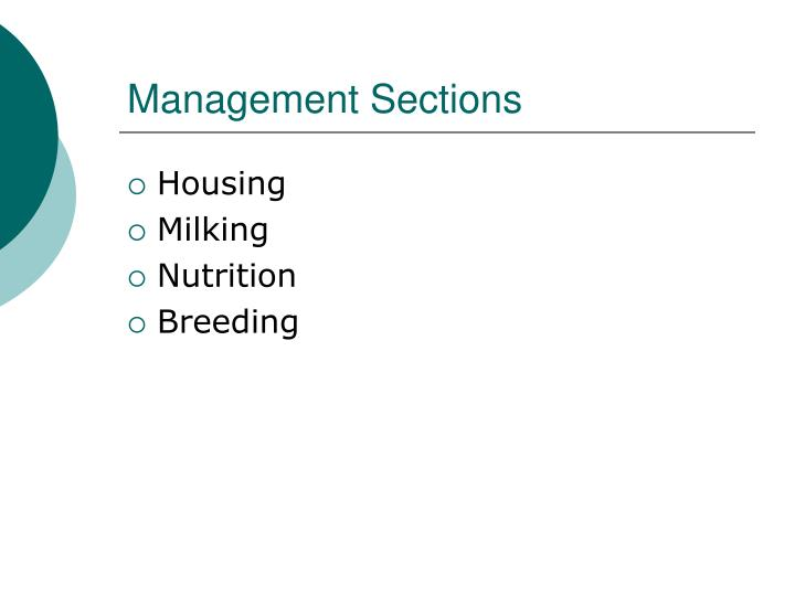 Management Sections