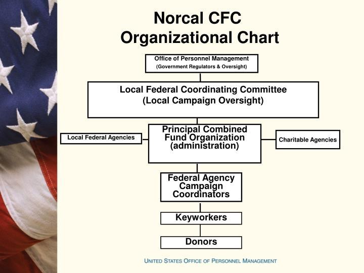 Norcal CFC