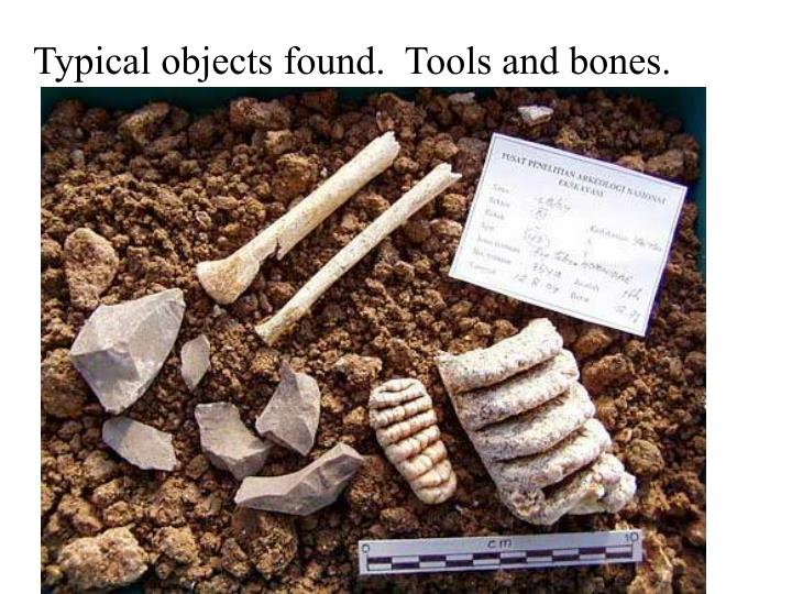 Typical objects found.  Tools and bones.