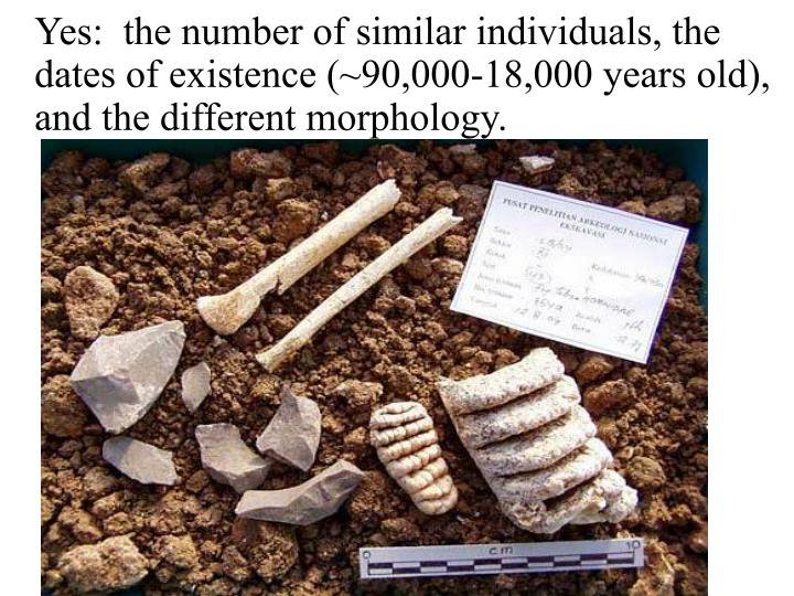 Yes:  the number of similar individuals, the dates of existence (~90,000-18,000 years old), and the different morphology.