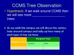 ccms tree observation