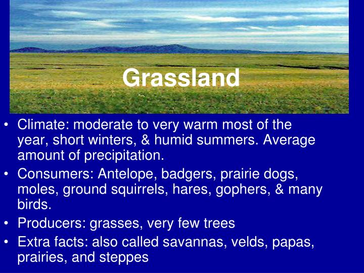 Climate: moderate to very warm most of the year, short winters, & humid summers. Average amount of precipitation.