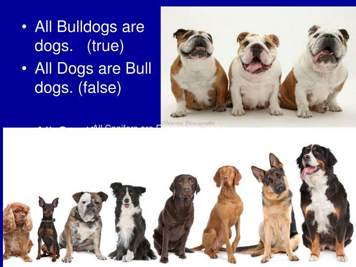 All Bulldogs are dogs.   (true)