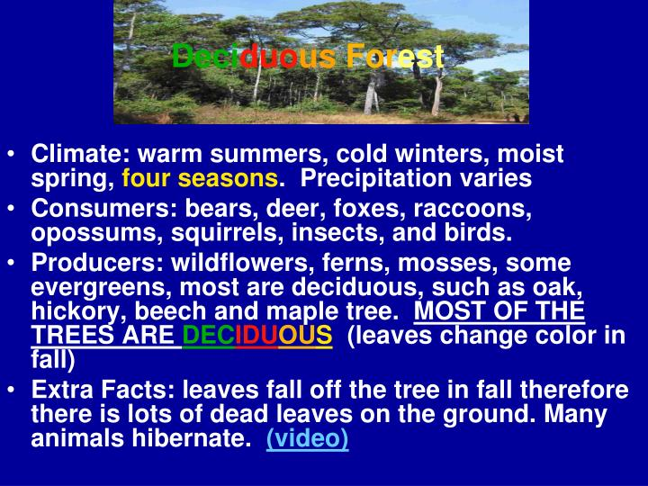 Climate: warm summers, cold winters, moist spring,