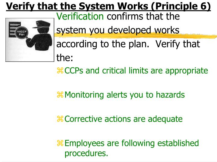 Verify that the System Works (Principle 6)