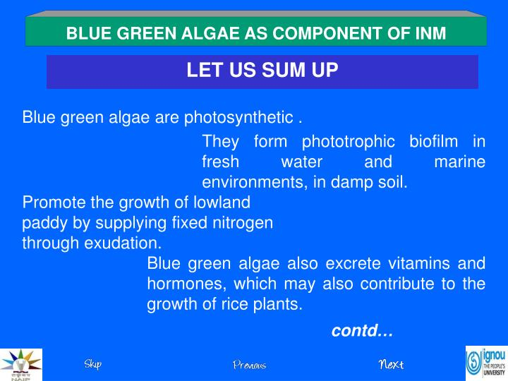 BLUE GREEN ALGAE AS COMPONENT OF INM