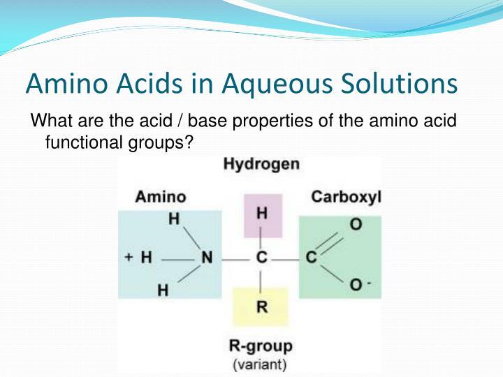Amino Acids in Aqueous Solutions