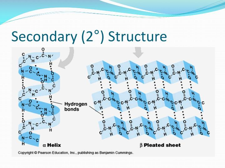 Secondary (2