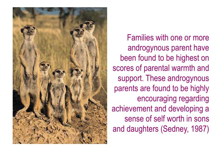 Families with one or more androgynous parent have been found to be highest on scores of parental warmth and support. These androgynous parents are found to be highly encouraging regarding achievement and developing a sense of self worth in sons and daughters (Sedney, 1987)