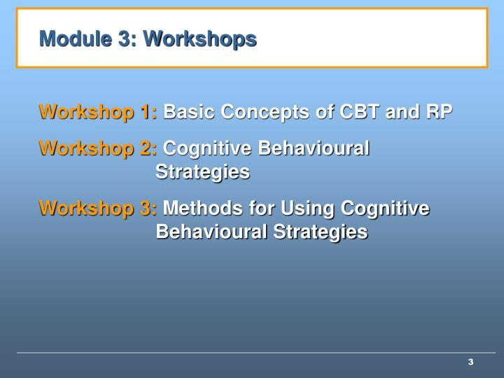 Module 3: Workshops