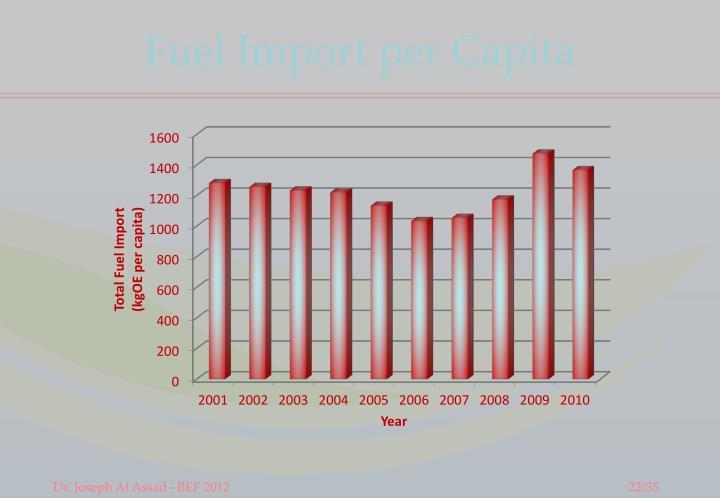 Fuel Import per Capita